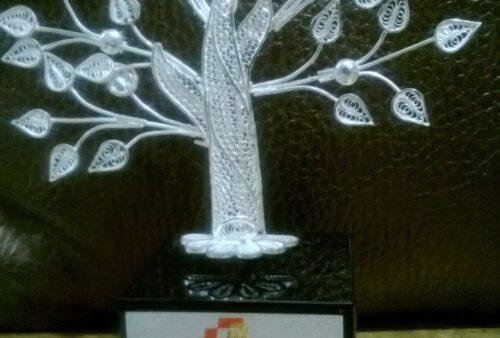Citizen Award2
