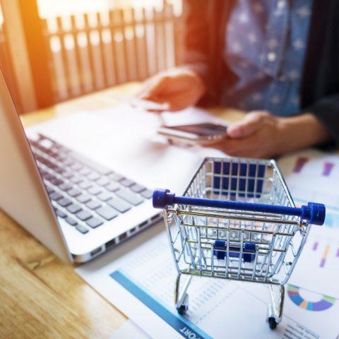 RhoMobile Shopping Network App